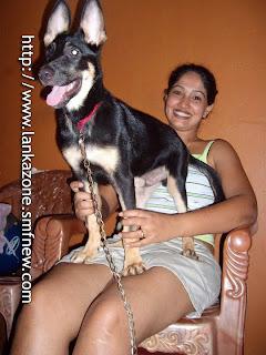 Piyumi Shanika hot legs dog