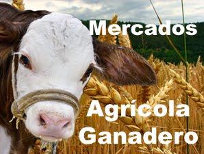 Info Mercados