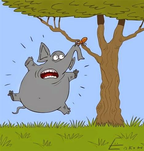 Mengapa gajah lebih takut semut dibanding tikus ?