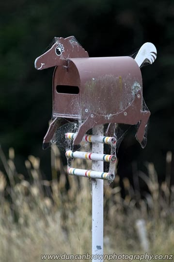 Showjumping letterbox at Kahuranaki photograph