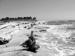 Cape San Blas - Nov 2010