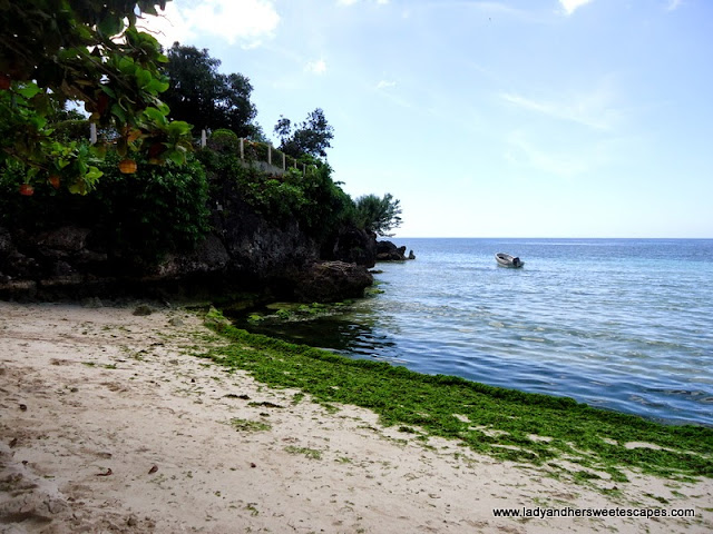 side at Alona Tropical_Beach Resort Bohol