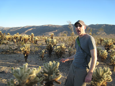 Pricked by Cholla Gardens in Joshua Tree National Park California