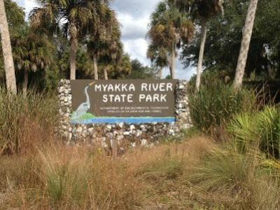 Myakka River State Park Bigoot