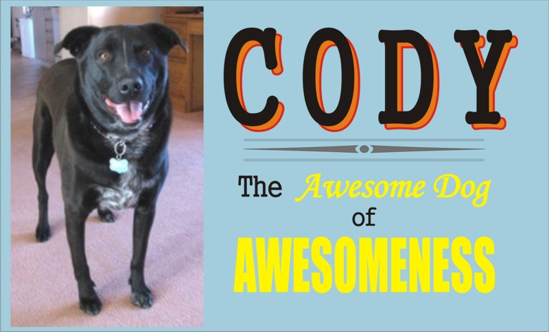 Cody, the Awesome Dog of Awesomeness