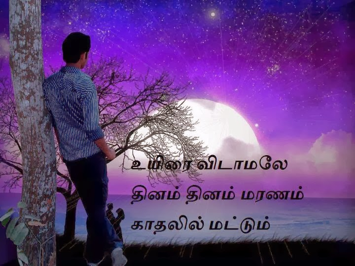 TAMILKAVITHAI.COM: February 2014