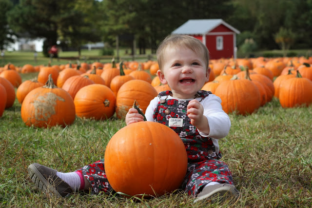 Happy baby with her pumpkin