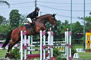 Luar Biasa! Olahraga Berkuda Mempunyai Beberapa Manfaat Untuk Kesehatan
