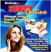 IDSurvey