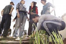 Talleres sobre Agricultura Ecológica y Medio Ambiente
