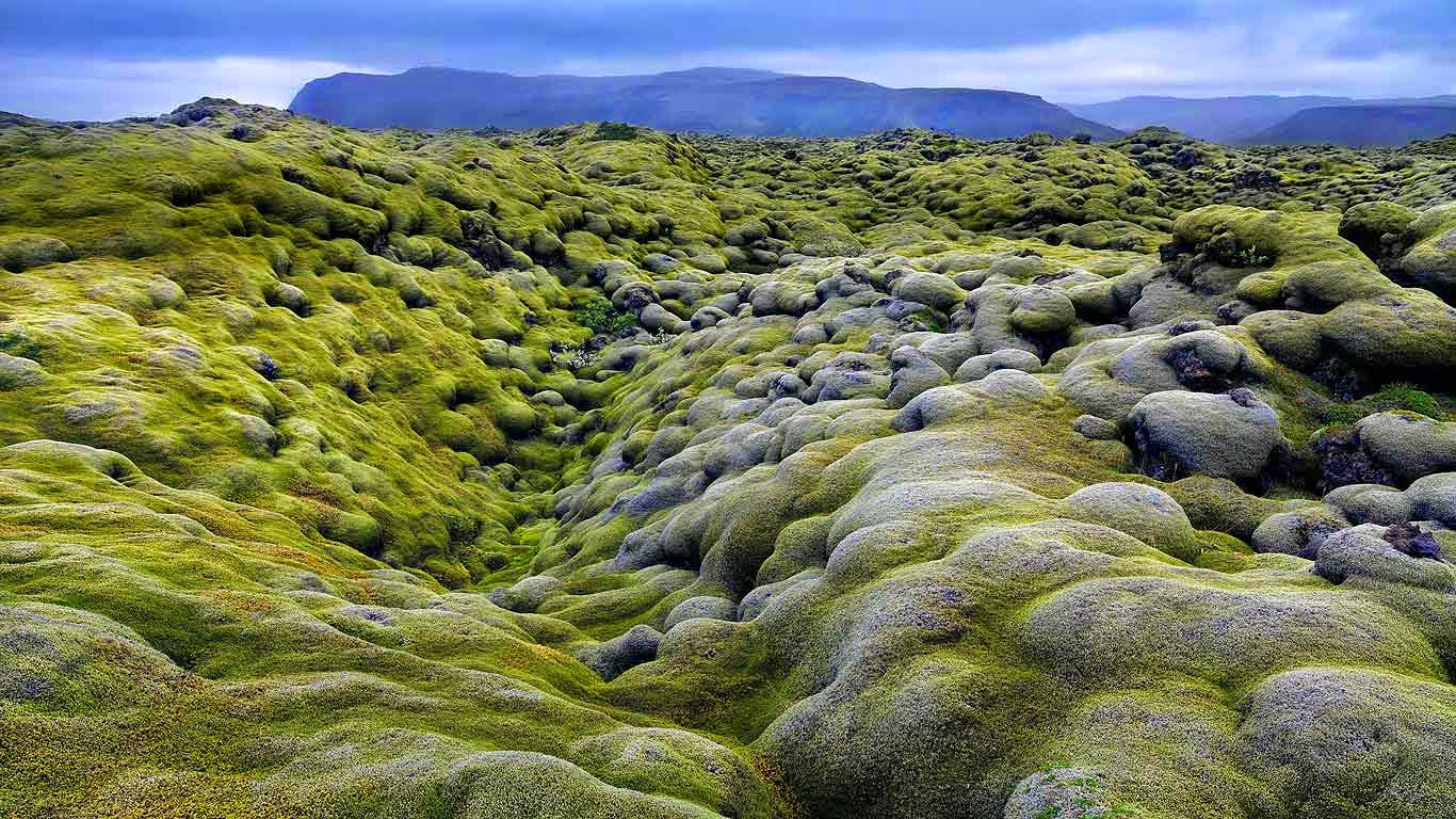 Eldhraun lava field in the Laki fissure system, Iceland (© Hans Strand/Corbis) 45