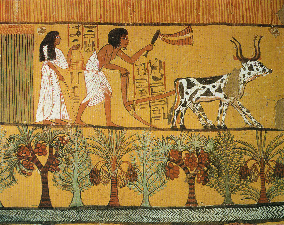 Ancient Egypt is the first human civilization known to possess high ...