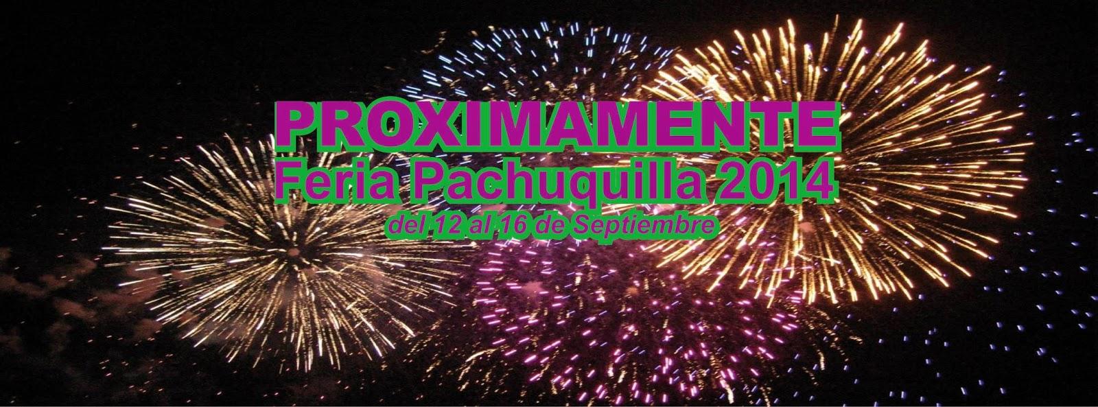 Feria fiestas patrias mineral de la reforma 2014