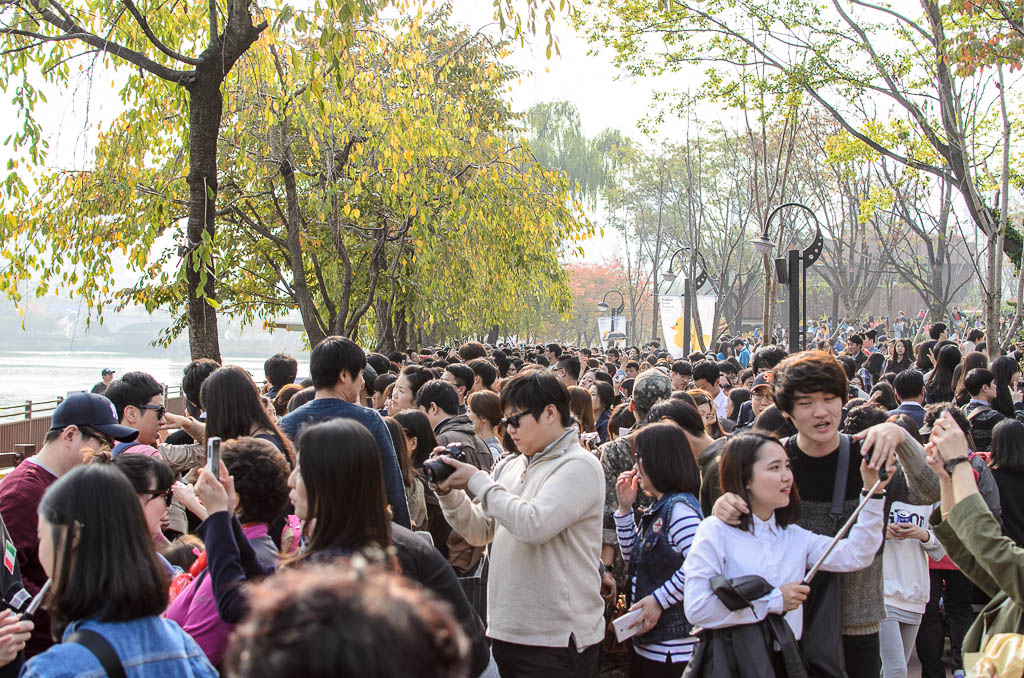 Crowd at Seoul Rubber Duck Project