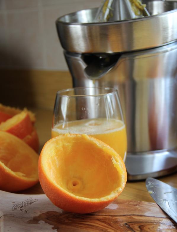 Breville Citrus Press - oranges