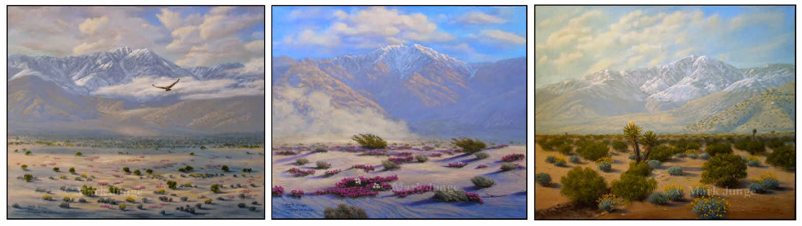 Mt. San Jacinto,Palm Springs,hawk,sand dunes,art