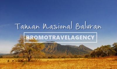 tips wisata taman nasional baluran