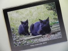Want A 2014 Cat Calendar?  Click on it!