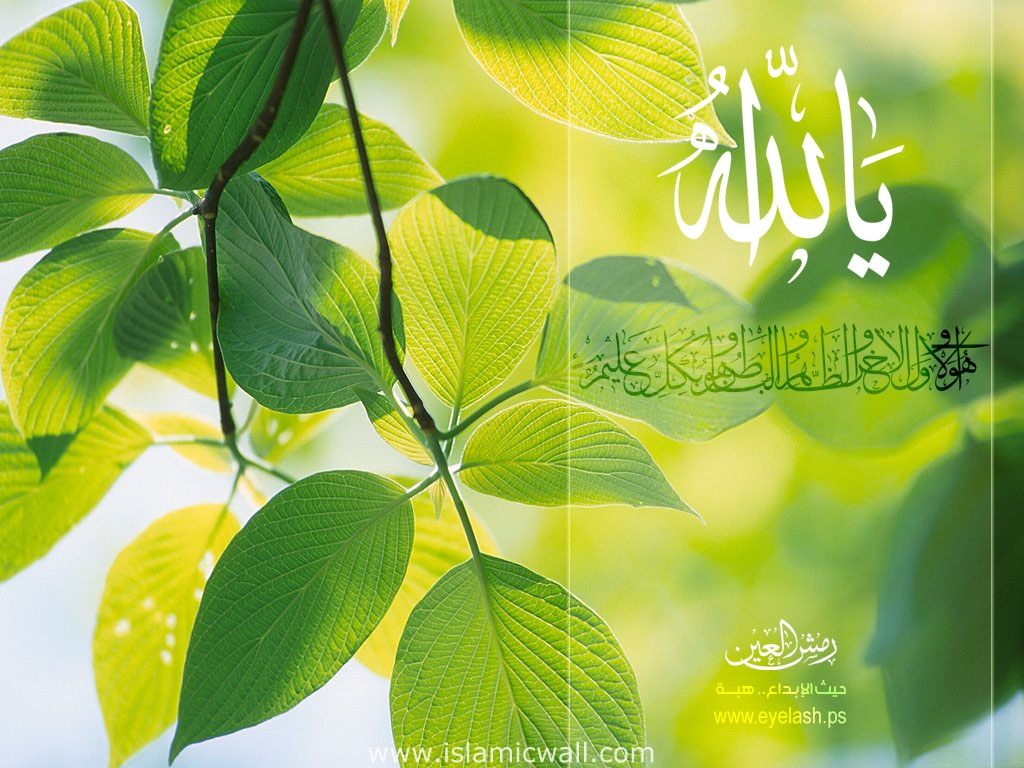 Nature Wallpapers Telecharger Islamic Wallpapers