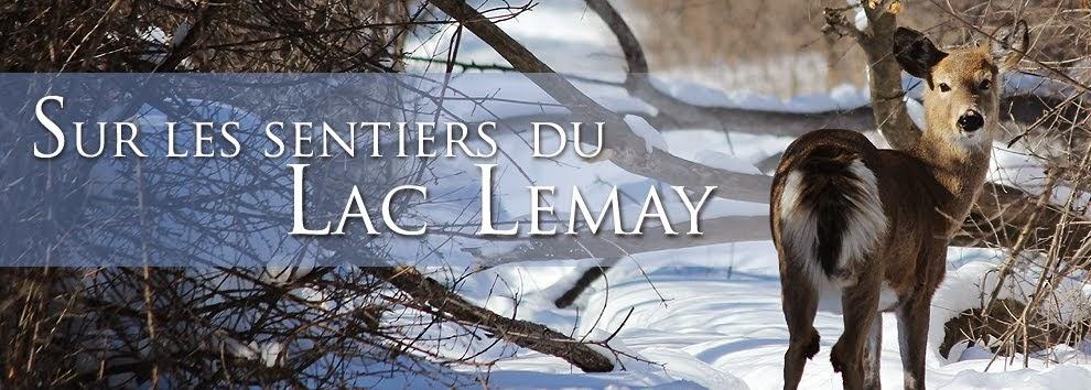 Sur les sentiers du Lac Leamy