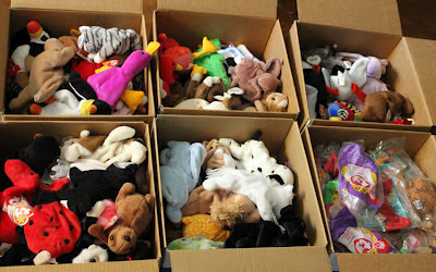6 boxes of beanie babies