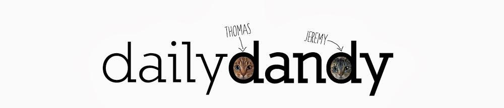 dailydandy • Personal Shopper de l'Homme Urbain • Blog Mode Homme