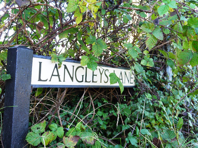 Langley's Lane signpost
