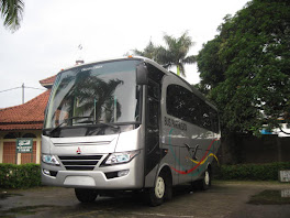 bus triun 2012