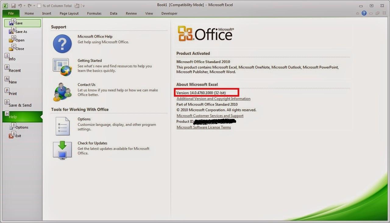 ms office version