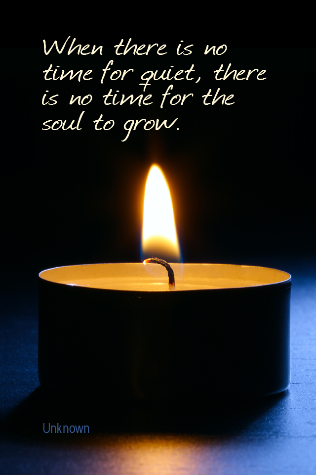 visual quote - image quotation for MEDITATION - When there is no time for quiet, there is no time for the soul to grow. - Unknown