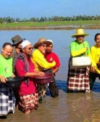 Nelayan Jadi Pesawah