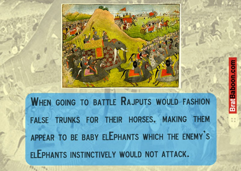 When going to battle Rajputs would fashion false trunks for their horses, making them appear to be baby elephants.