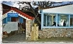 ΚΑΡΥΔΙΑ - ΤΣΙΠΟΥΡΑΔΙΚΟ