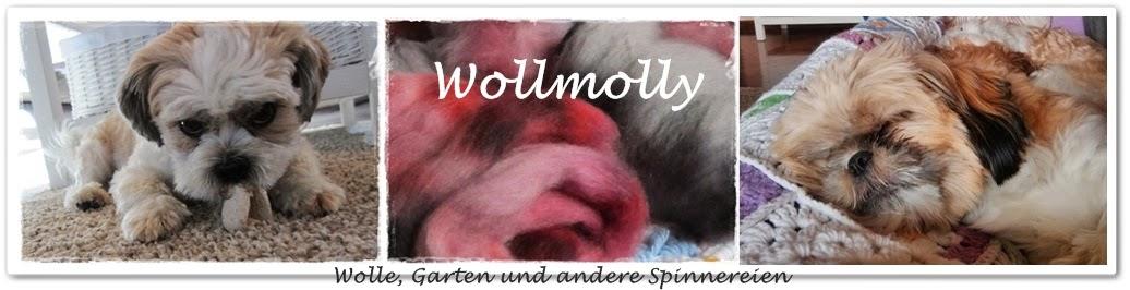 Wollmolly