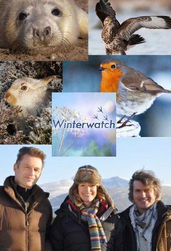 Winterwatch 2017    Bölüm 2