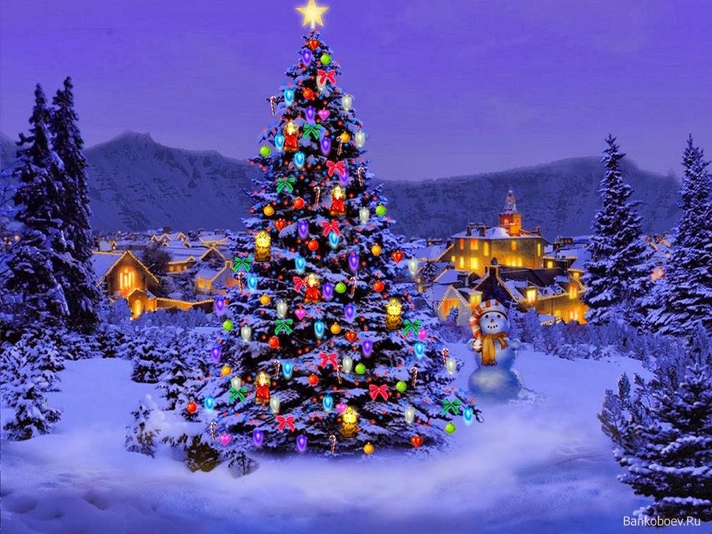 01 декабря:
