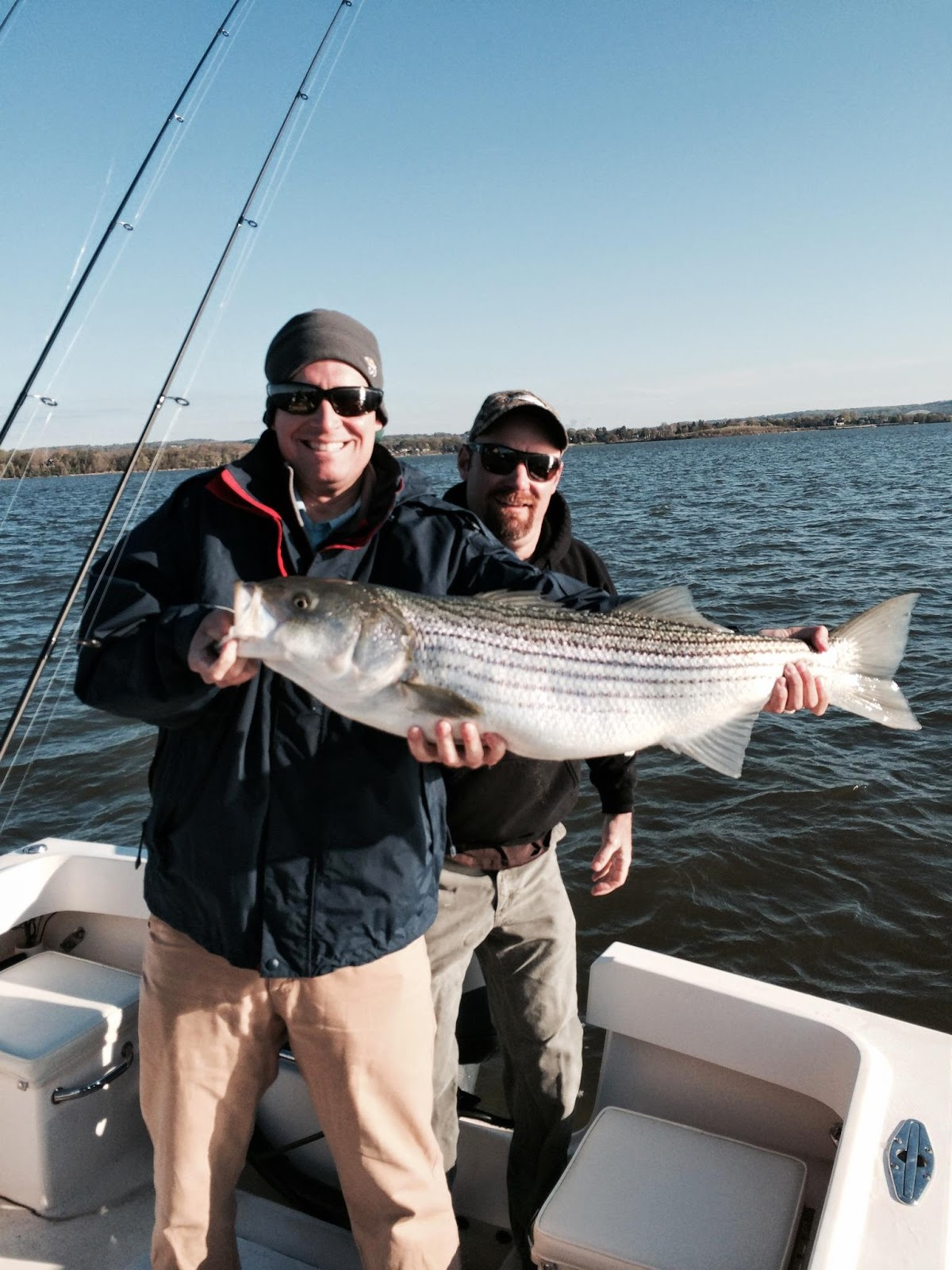 Lew 39 s fly angler chesapeake bay and gunpowder river for Upper chesapeake bay fishing report