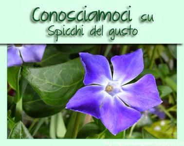 http://spicchidelgusto.blogspot.it/2014/03/5-edizione-conosciamoci.html