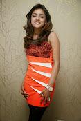 Vithika sheru latest Glamorous Photos Gallery-thumbnail-18