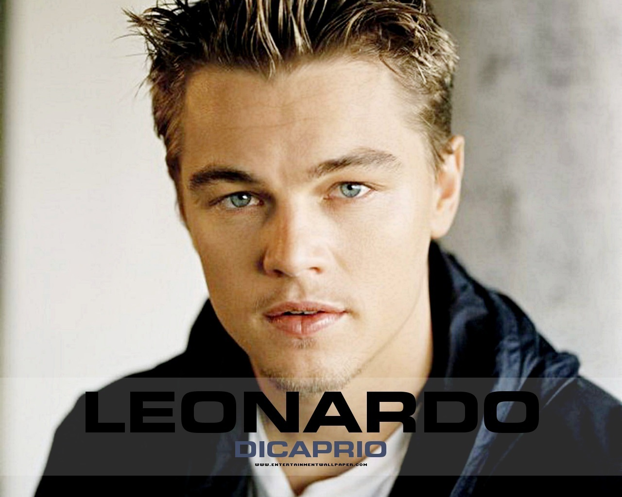 Leonardo dicaprio Wallpaper 11 With 1280 x 1024 Resolution ( 202kB )