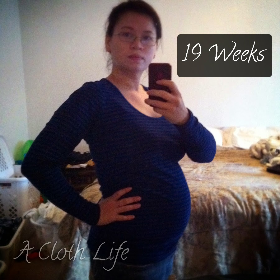 A Cloth Life: belly update 19 weeks