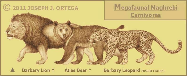 http://4.bp.blogspot.com/-mL_cNjapayc/UkeczECMW8I/AAAAAAAAASI/K6IyMroJ4Ic/s1600/Megafaunal+Maghrebi+Carnivores.jpg