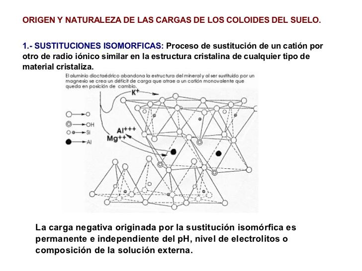 Fundamentos de la ciencia coloides org nico minerales del for Significado de suelo