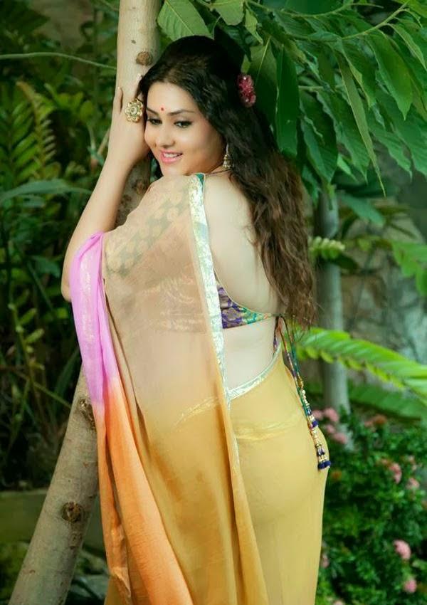 Namitha Hot In Backless Saree Blouse Photos South Masala ...