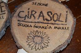 Sezione Girasoli