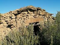 Barraca de vinya a prop del Camí de Castellnou