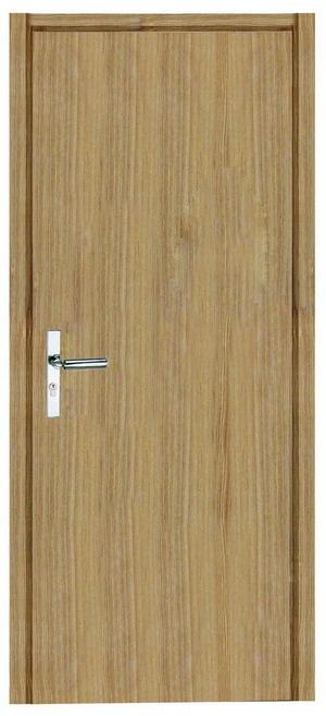 Panel Doors Flush Doors