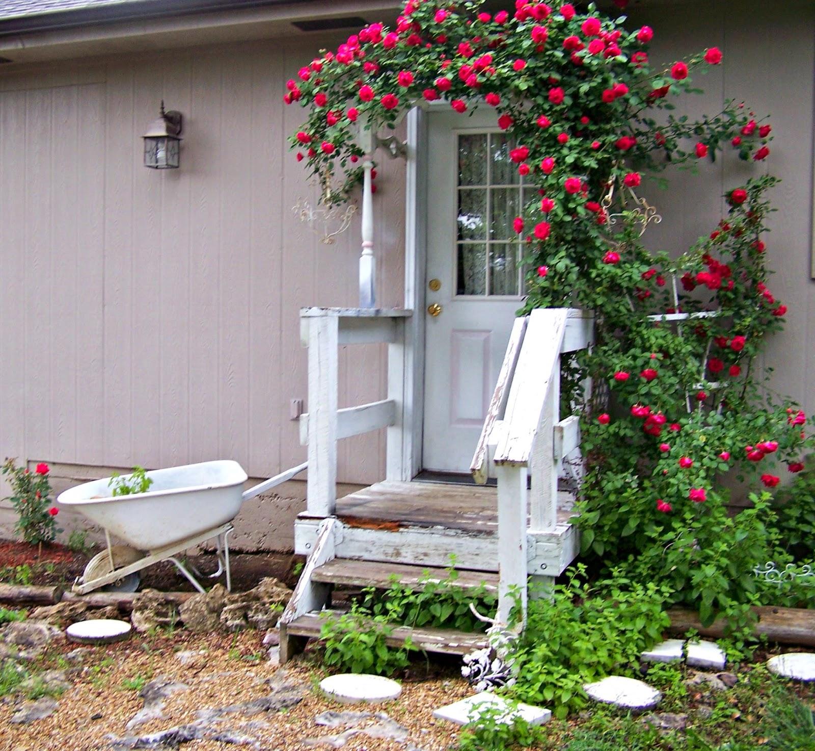 Olivia 39 S Romantic Home Shabby Chic Rose Garden