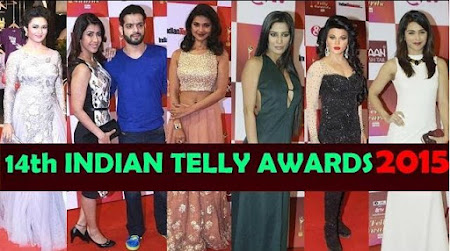 Poster Of 14th Indian Telly Awards 2015 Full Show Dailymotion HDTVRip 720P Download HD