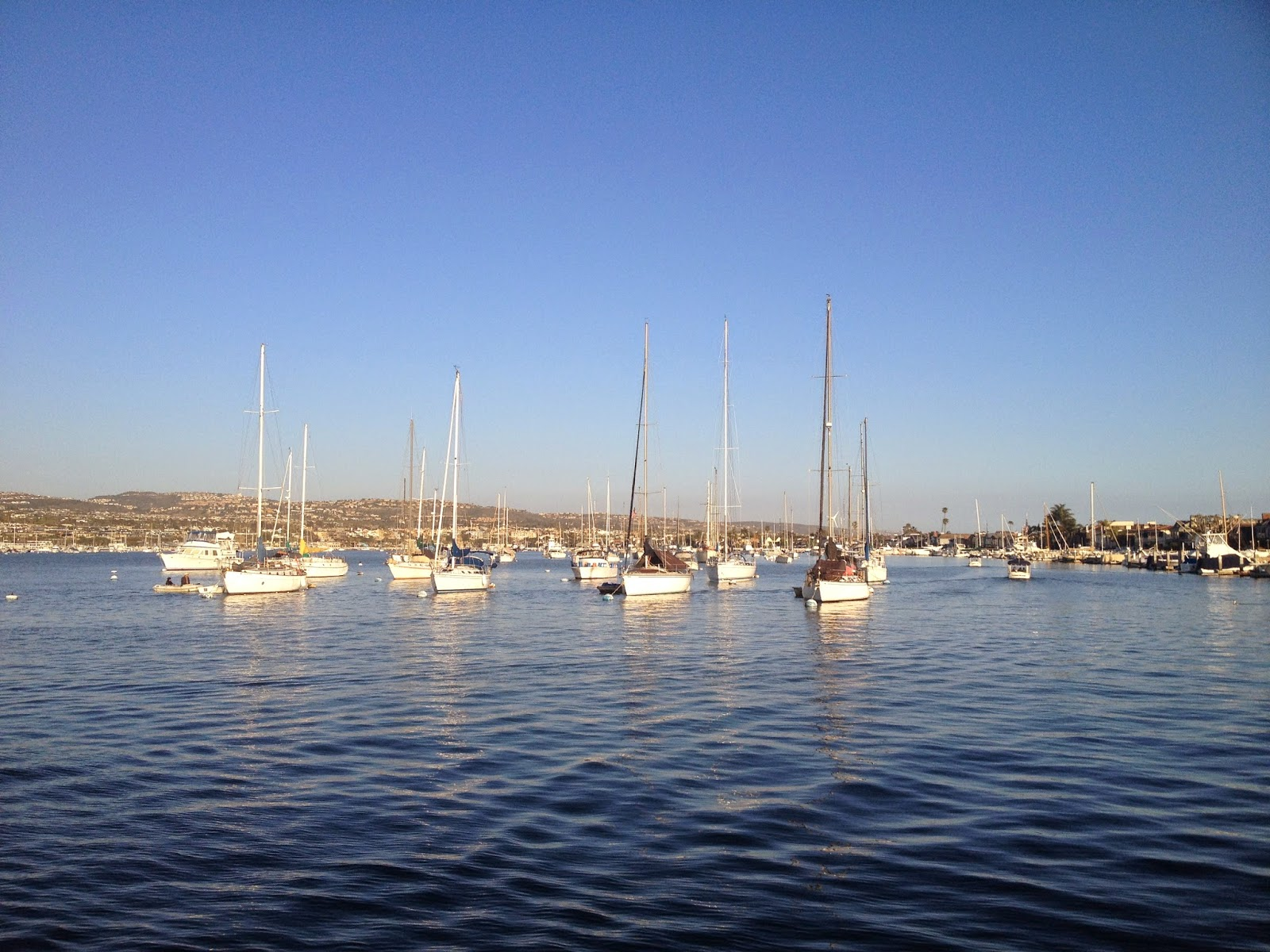 Sailboats in Balboa Harbor - Newport Beach, CA